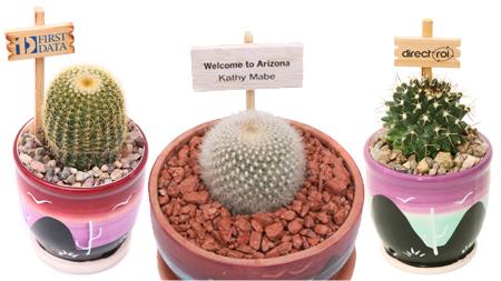 custom live cactus signs